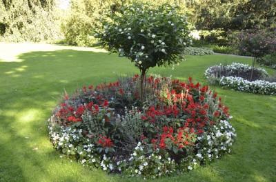 ring-garden-400x264