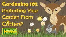 Gardening-Series-101_MediaRoom_banners_Critters