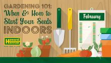 gardening-series-101_mediaroom_whentostartyourseedsindoors_700x400