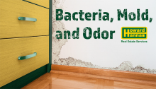 Bacteria, Mold, and Odor