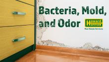 mediaroombanner_bacteriamold_v2b